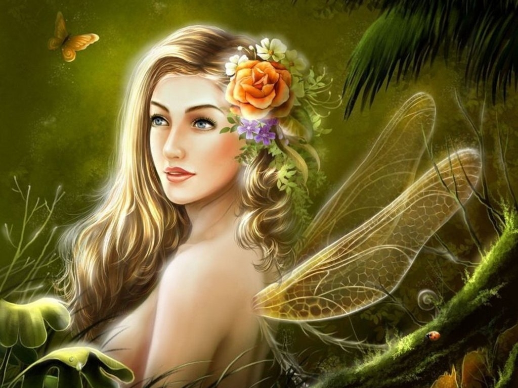 Group of Beautiful Fairy  We Beautiful Fairy Pictures