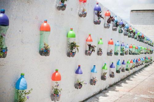 Diy Pet Bottle Garden Large