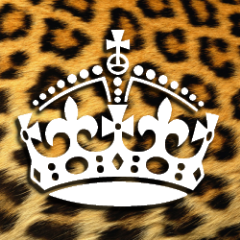 392e71b32da80bf5576be46c3b197014 large Leopard king.