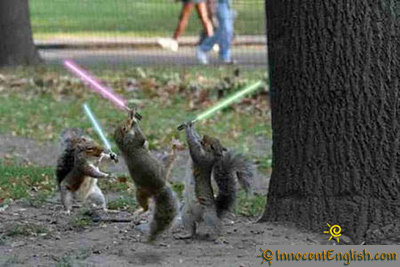 35-jedi-squirrels_large