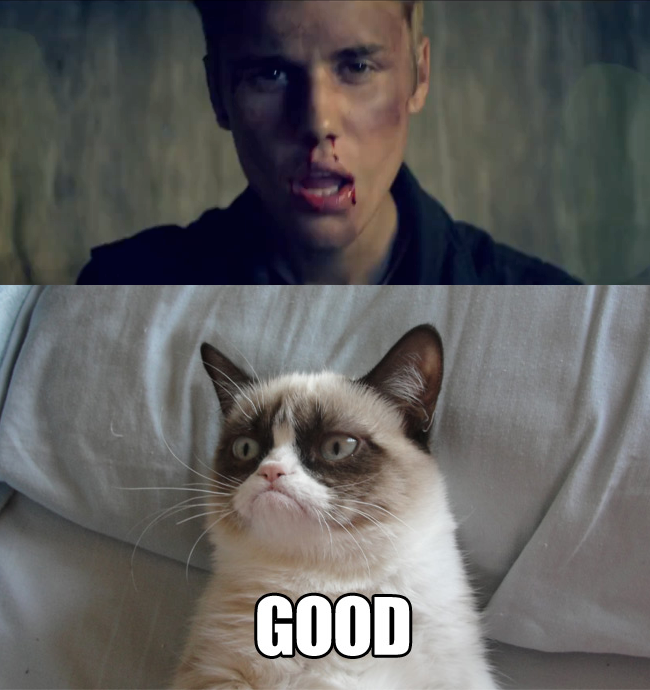 Intellectual Property Meme: Angry Cat, Meme, And Funny