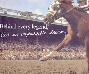 amazing-equestrian | via Tumblr