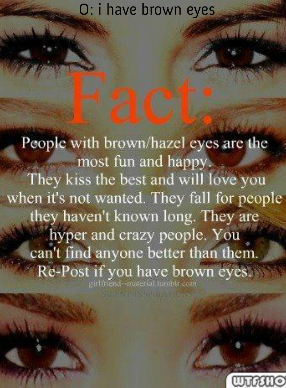 Image Gallery hazel eyes meaning