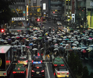 pug-o-graphy | fuckyeahjapanandkorea: shibuya crossing, rainy... | via Tumblr