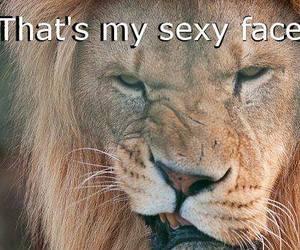 sexy face