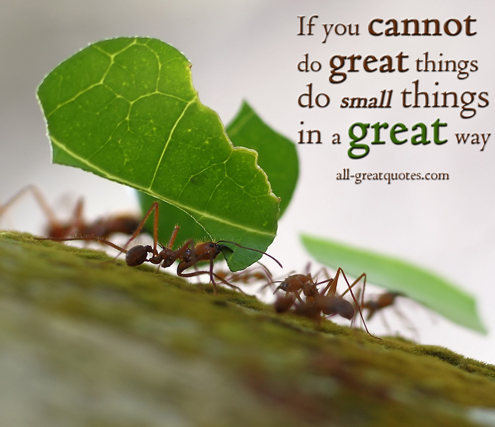 Good Morning Vietnam If You Do : If you cannot do great things small in a
