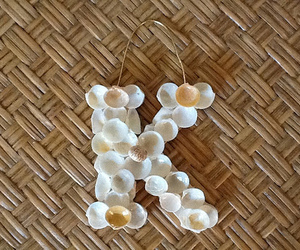 seashell jewelry
