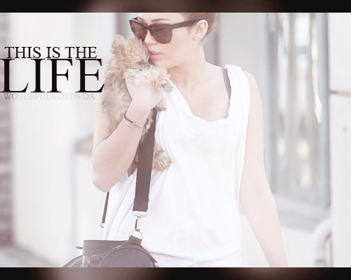 This_is_the_life__by_wonderfulwords-d39edb5_large