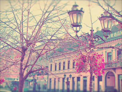 Pictures For the Banner Tumblr_lh1xrzVTbQ1qgwd48o1_400_large