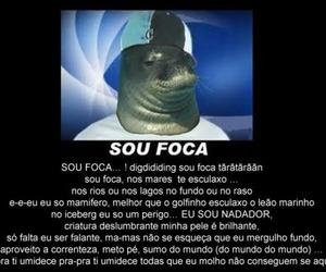 sou foca