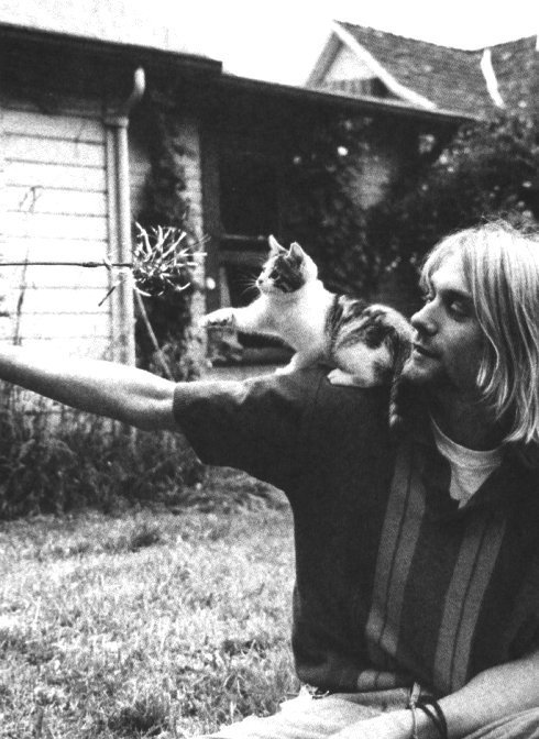 Kurt_cobain_and_his_kitten_large
