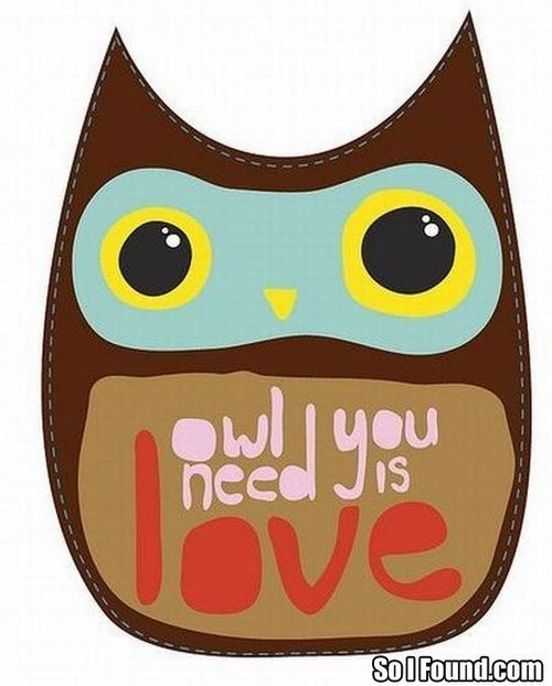 Owl-you-need-is-love_large