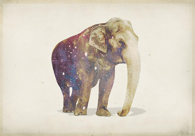 Thou Art Full Of Truth And Grace Incompiuto Elefante By