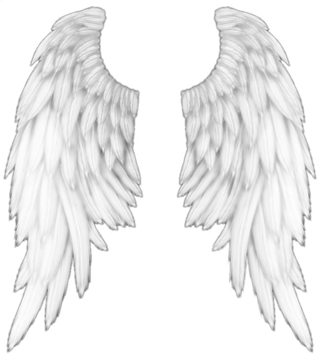 White angel wings by Satoru Karagami   WHI