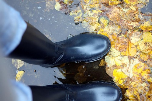 Most popular tags for this image include: autumn, boots, puddle and rain