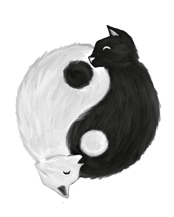 black, cats and yin yang image on We Heart It