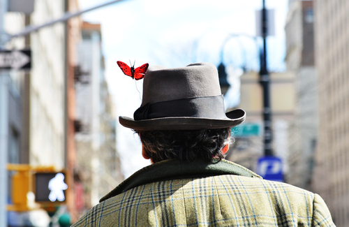 Springbutterfly_large