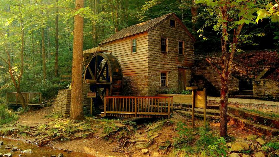 Home In Forest Top 10 Most Beautiful Forest Houses Part 2  Marvelous Homes