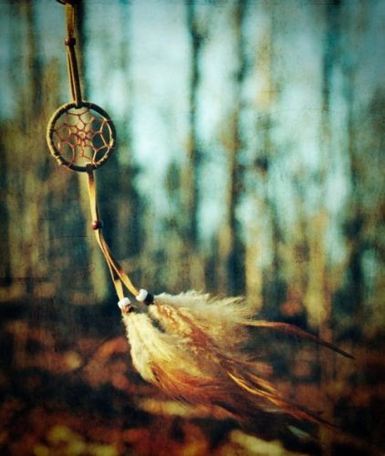 Dreamcatcher,inspiration-8434e219d744c6f8190480718cec390f_h_large