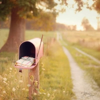 Birthdaymailbox,nature,letterbox,pink-508c93f2ad050b2a883bccc37227d5f6_h_large