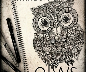 right-owls