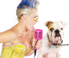 Imagens de P!nk – Descubra músicas, vídeos, shows, estatísticas e fotos na Last.fm