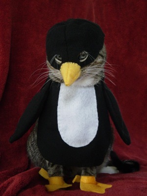 Cat-in-penguin-costume_large