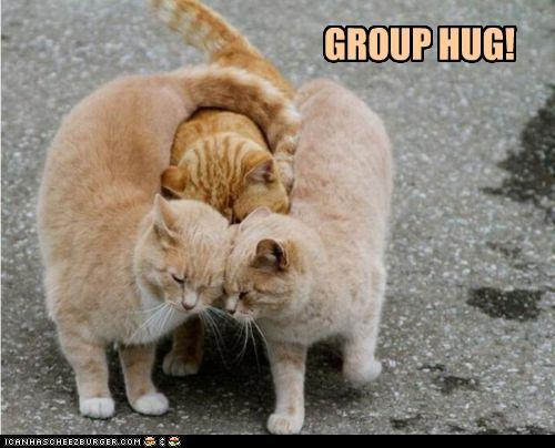 funny-pictures-group-hug_large.jpg?1303263355