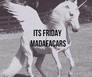 friday madafacars school