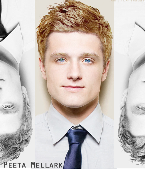 Josh-hutcherson-as-peeta-mellark-josh-hutcherson-20723463-500-585_large