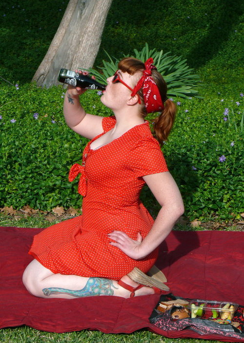 Picnic_pin_up_by_2omb13_large