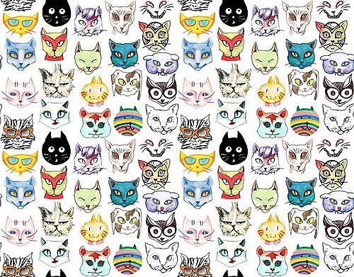 BHipster Cat Backgrounds B Tumblr
