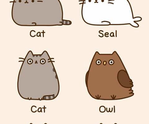 54 Images About Pusheen The Cat On We Heart It See More
