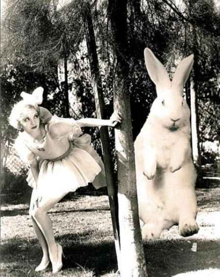 Alice-white-hiding-from-giant-easter-bunny_large