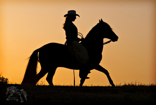 Cowgirl_at_dusk_by_kvickrey_large