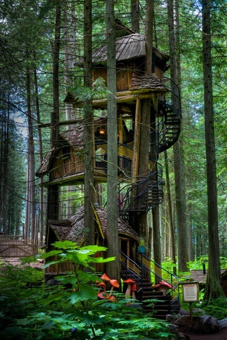 Piccsy :: Three story treehouse.
