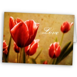 Antique_tulips_note_card-p137534368781997704vrae_325_large