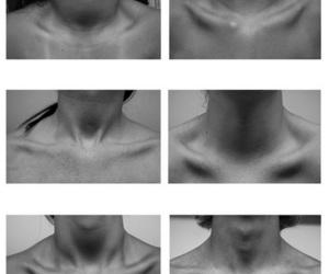 collarbones
