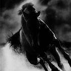 horsegirl98