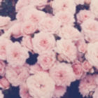 Tanesha_19
