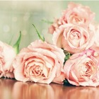 Flowers..I'm Free..