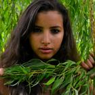Sofia El
