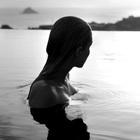 fragile waves