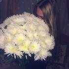 Dani_Smirnova