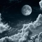 moonlight143