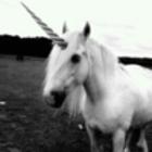 Unicorn.sing