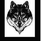 wilkowaa