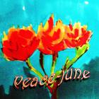 ~Peace-june
