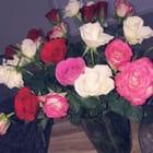 FlowerQueen