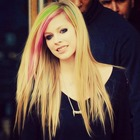 Avril's Lilac Flower